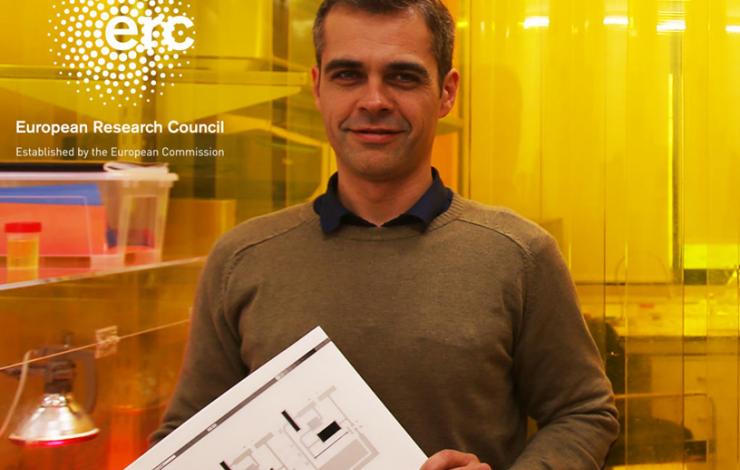Professor Luis Pereira obtém uma bolsa ERC Starting Grant