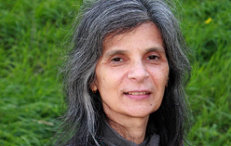 "Professora Helena Godinho, nomeada pela ""British Liquid Crystal Society"""