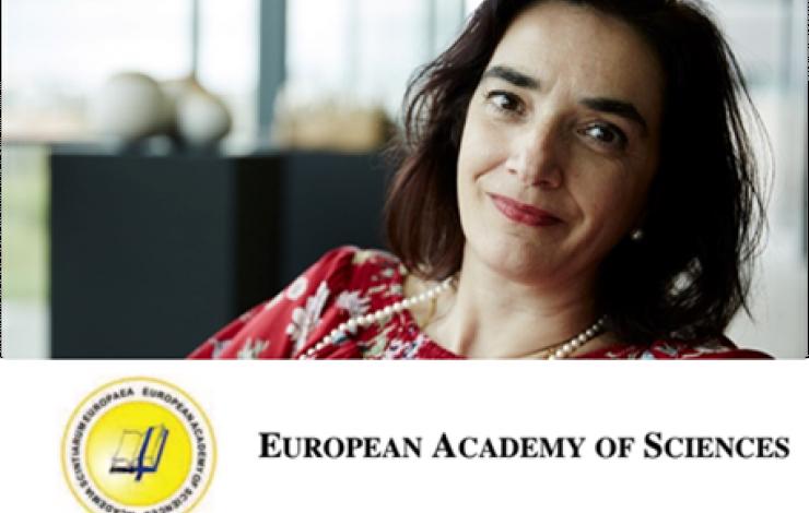 Professora Elvira Fortunato recebe a medalha Blaise Pascal 2016 atribuída pela A
